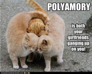 Polyamory is both your girlfriends ganging up on you.