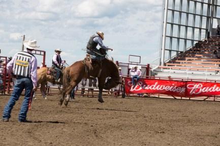 Panoka Rodeo 752