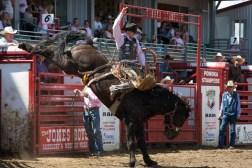Panoka Rodeo 857