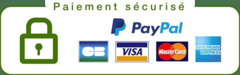 paiement_securise_grande_3765de50-b3f4-45b2-8f23-4fbc4e5ed76b_large