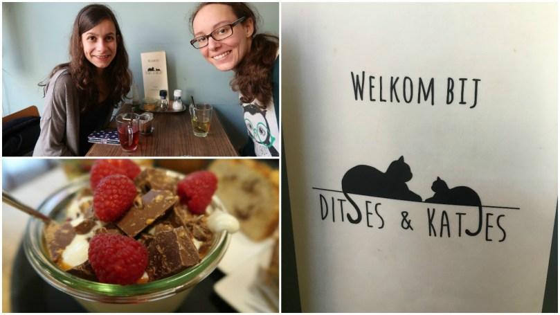 VLOG: Afspreken (!), lunch bij de Yoghurt Barn en een kattencafé!