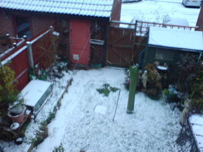 My Backgarden with snow!