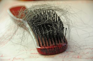 Shedding telogen hair