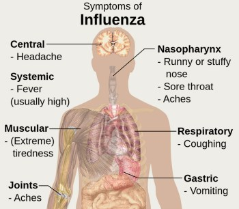 Symptoms_of_influenza