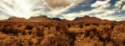 Chisos Mountains from the Low Desert