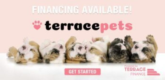Financing available through the Terrace Pets multi-lender platform powered by Terrace Finance. One easy application pinpoints your needs and finds you the best lender match from the network.