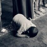 Skal muslimerne tage afstand?