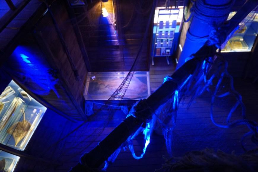 marina museum antalya