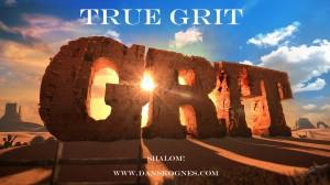 True Grit dan skognes motivation blogger speaker teacher trainer coach educator