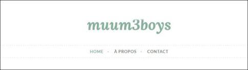 mum-3-boys-768x219