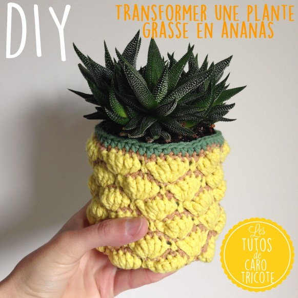 tuto un cache pot au crochet en forme d ananas pour plante grasse le blog de caro tricote. Black Bedroom Furniture Sets. Home Design Ideas