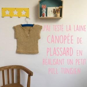 Pull tunisien Plassard