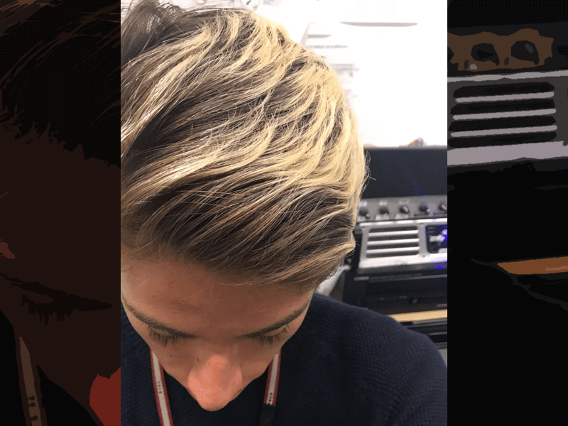 Chestnut blonde hair color