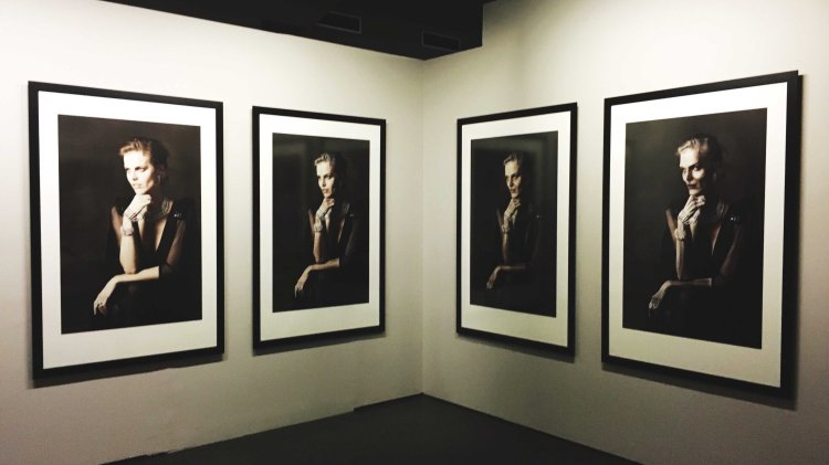 A portrait of Dorian Grey Karl Lagerfeld A Visual Journey