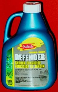 Safers Defender