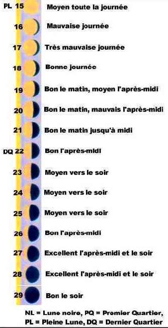 Un calendrier lunaire de p che est il vraiment fiable dans notre maison - Calendrier lunaire du jardinier ...