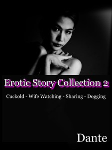 Erotic story collection 2