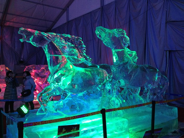 Festivalul ghetii si zapezii Beijing 2014 5