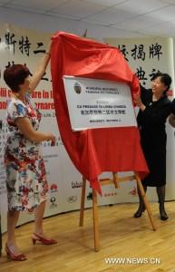 Scoala cu predare in limba chineza la Bucuresti, 5 iulie 2014