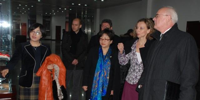 Prof. Univ. Dr. Luminita Balan, Beijing dec 2014