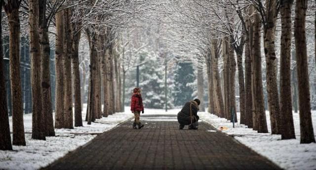 Ninsoare de anul nou la Beijing 2015, H
