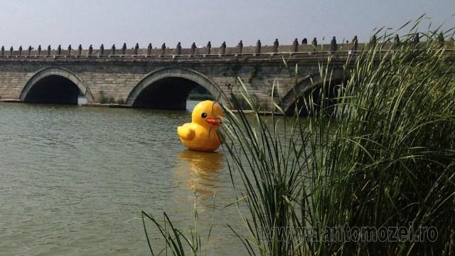 Salut pe Podul Marco Polo 6