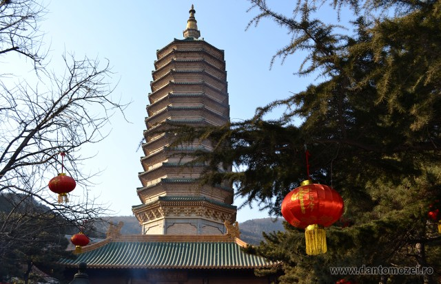 Ceremonie imperiala la Templul Bataciu 2016_Dan Tomozei 10