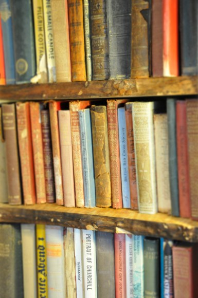 Books in the Danyfan Library