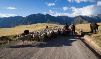2016-05-03 ** Peru 2016 05 ** 1045
