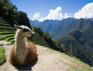2016-05-04 ** Peru 2016 05 ** 1468