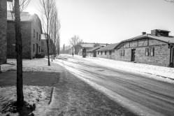 2017-01-22-krakow-green-day-145