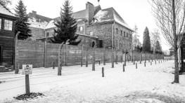 2017-01-22-krakow-green-day-158
