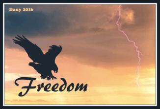 Freedom !!!