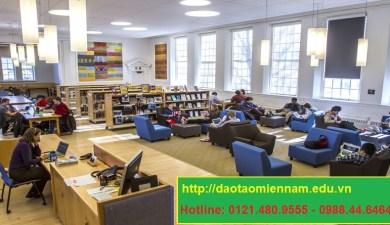 trung cấp thư viện thiết bị trường học tại quận 11