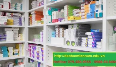 liên thông cao đẳng dược tại nha trang