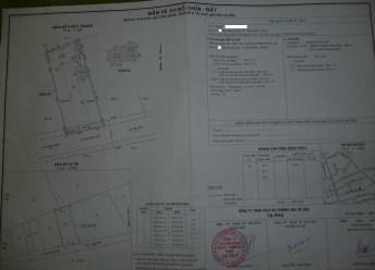 P1020101 (2)