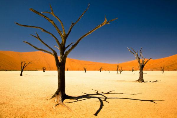 De prachtig gekleurde Sossusvlei (bron: www.theguardian.com)