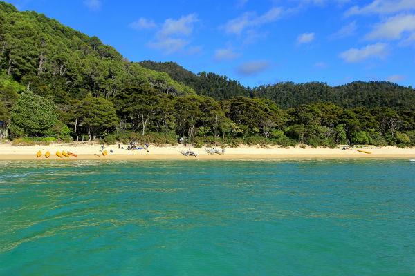 De prachtige kustlijn van het Abel Tasman National Park