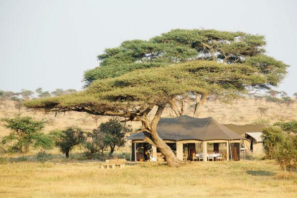 Namiri Plains Serengeti Oosten Tanzania Camp