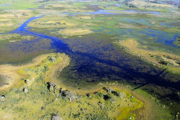 drassige okavango delta