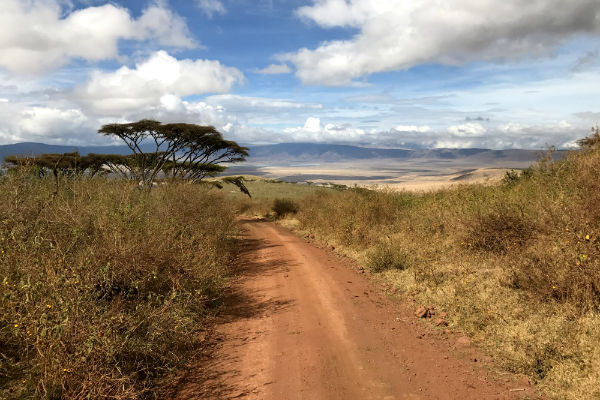 on-the-road-ngorongoro-krater-noord-tanzania