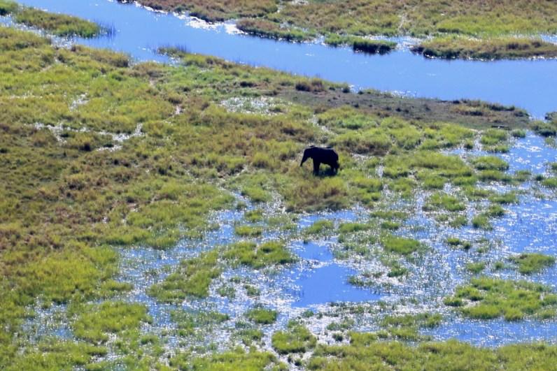 De prachtige Okavango Delta in Botswana vanuit het vliegtuigje