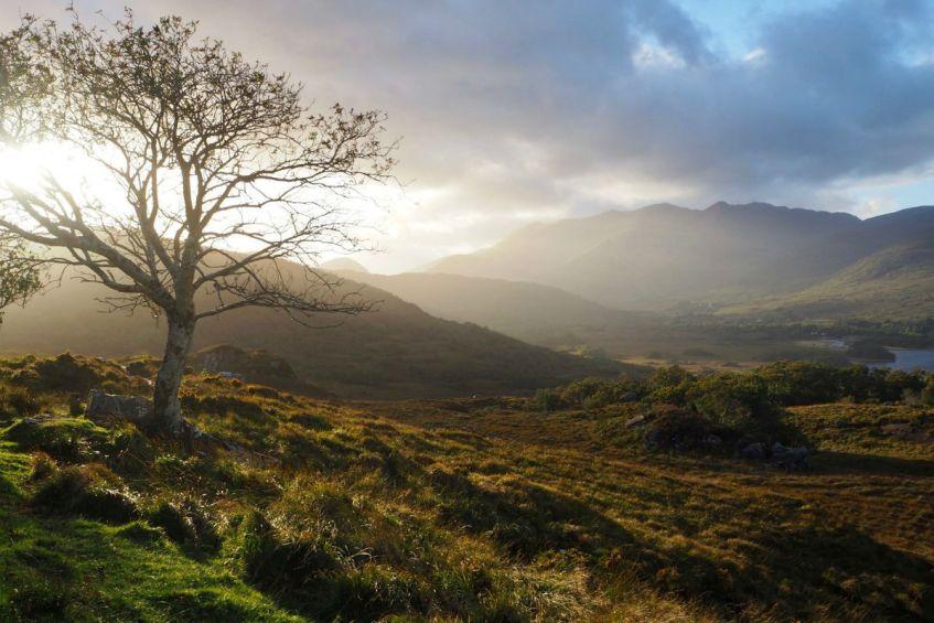 Maak zeker een roadtrip langs de Ring of Kerry in Zuid Ierland is een roadtrip