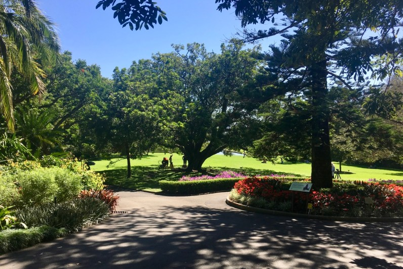 Royal Botanic Garden in Sydney