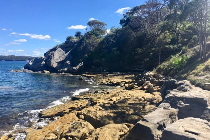 Shark Beach in Sydney