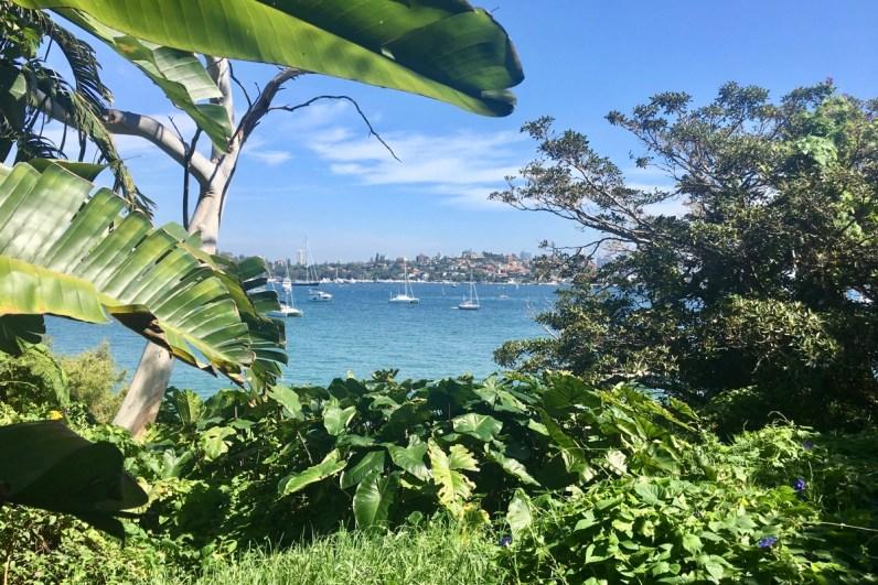 To do in Sydney wandel van Rose Bay naar Watson Bay en kijk goed om je heen onderweg