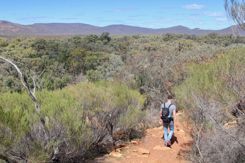 Hiken door het prachtige Flinders Ranges National Park hoort zeker in de reisupdate