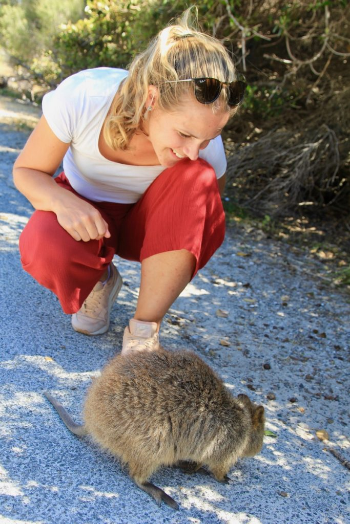 Ontdek de schattige quokkas op Rottnest Island in Australie