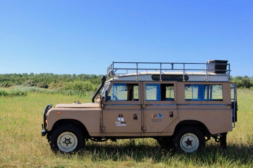 Zet een natuursafari in het Nationaal Park Lauwersmeer op jouw Nederland bucketlist