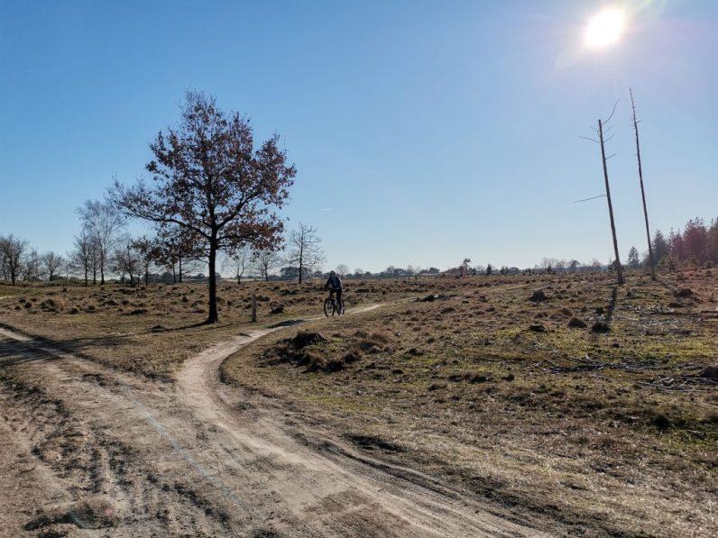 Wat je zeker moet doen in Nederland is een bezoek brengen aan het Drents Friese Wold